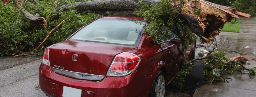 Storm Damage, Fires & Floods